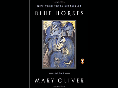 Book cover image for Blue Horses